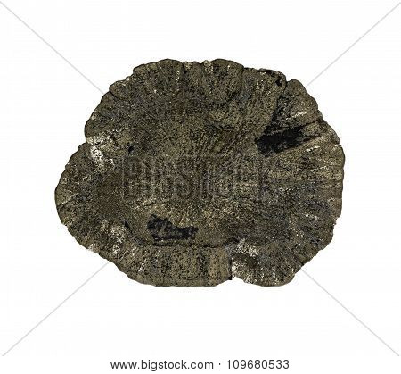 Pyrite On A White Background, Isolated