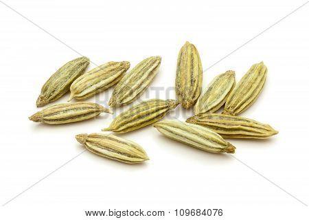 Macro closeup of Organic Aniseed.