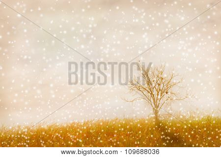 Abstract Nature Background. Made With Color Filters In Soft Color And Soft Focus, Blurred Style.