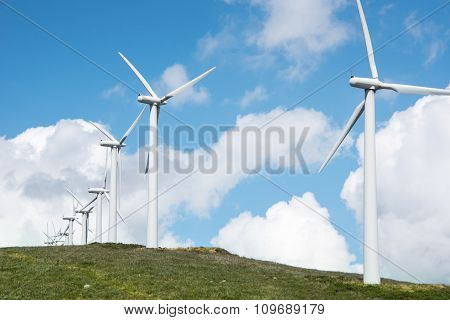 windmill powered plant