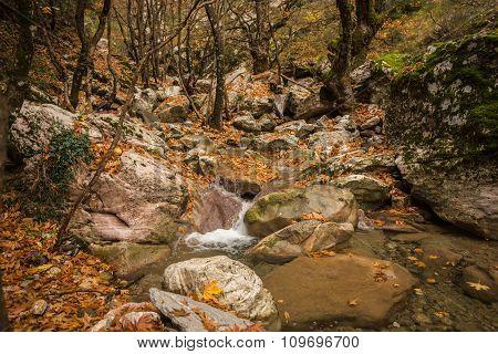 Autumn Landscape With A River