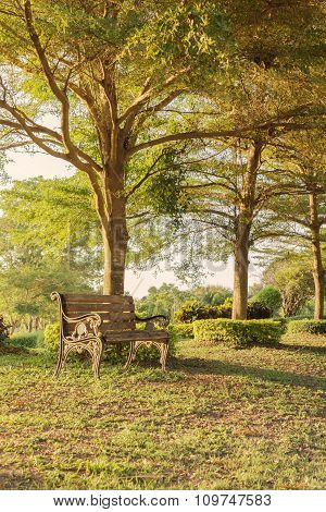 Blank Old Vintage Wooden Bench Under Tree Shade At Public Park