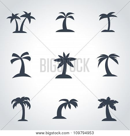 Vector Black Palm Icon Set
