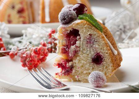 Piece Of Christmas Cranberry Cake
