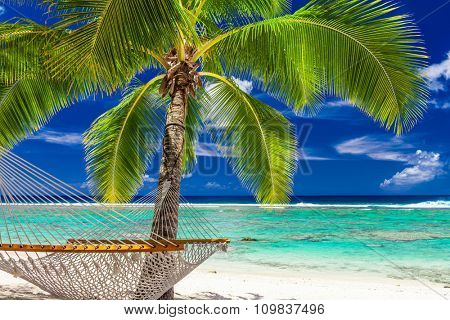 A single palm tree with a hammock on the beach of Rarotonga, Cook Islands