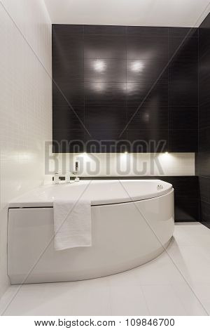 Stylish Elegant Bathroom