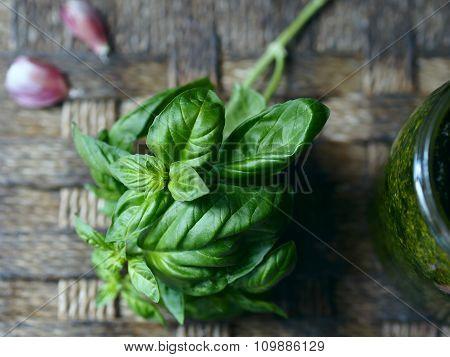 Basil and pesto