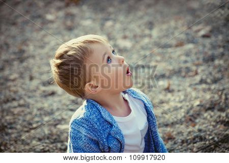 wow I saw the plane It is amazing, little boy at the moment he saw the plane, outdoor in park, autumn day, selective focus