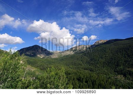 Green Mountains Of Independence Pass, Colorado