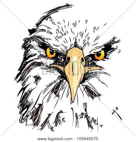 Vector Eagle Head simple pencil sketch