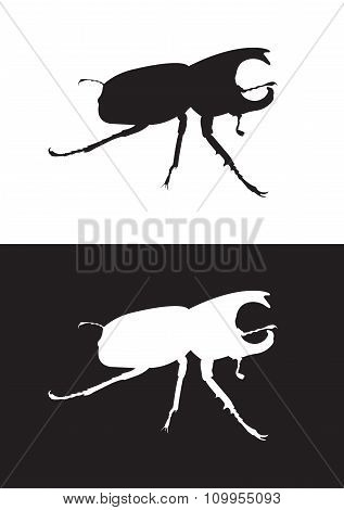 Vector silhouette of rhinoceros beetle- Stock Illustration