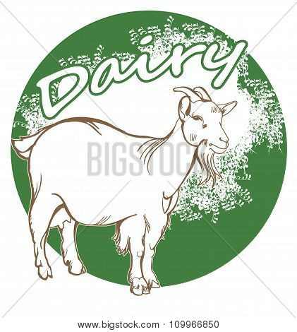 Package of goat milk