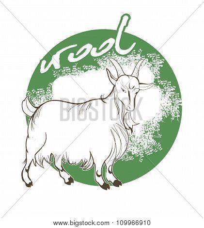 Mountain Goat Wool