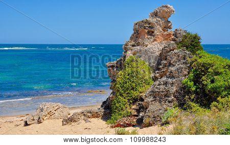 Cape Peron: Vegetated Limestone, Western Australia