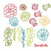 Succulents set  In the hand drawn style. Set for scrapbooking, decal, stickers poster