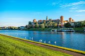 Beautiful view on Vistula river with swans swimming near Wawel castle in Krakow on the morning poster