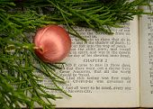 Open Bible with greenery and ornaments. Bible open to Gospel of Luke chapter 2 the story of the birth of Christ. poster