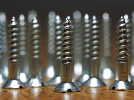 Small Silver Wood Screws
