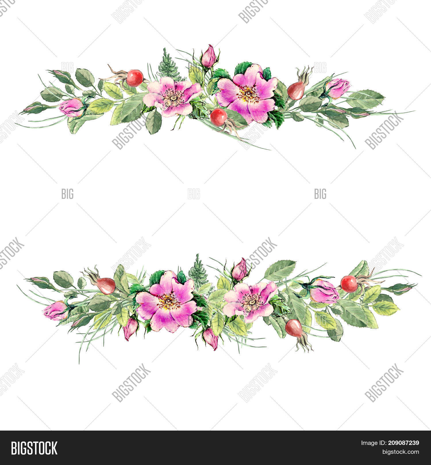 Banner Flowering Pink Image Photo Free Trial Bigstock