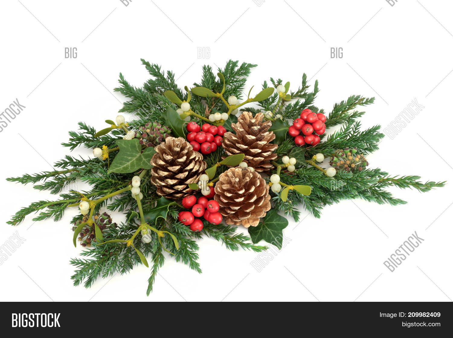 Christmas floral table decoration with holly, gold pine cones, ivy, mistletoe, cedar