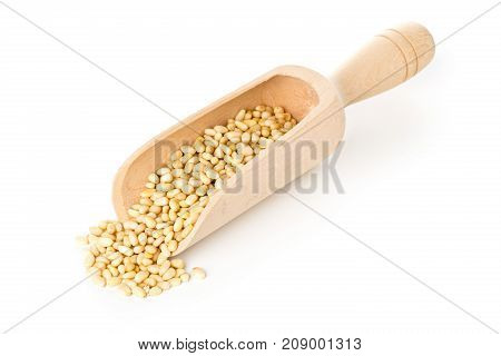 Heap of raw uncooked pine nuts in wooden scoop over white background