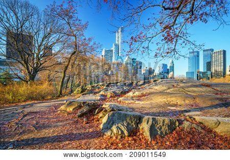 Central park in New York City at autumn morning, USA