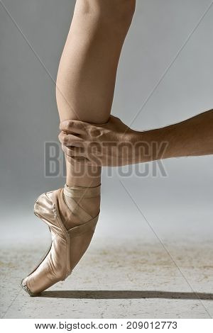 Male hand is holding the ballerina's leg on the gray background in the studio. Girl wears beige pointe shoes and stands on the toe. Closeup. Vertical.