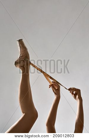 Leg and arms of the ballerina in the studio on the gray background. She holds the ribbons of her beige pointe shoe. Closeup. Vertical.