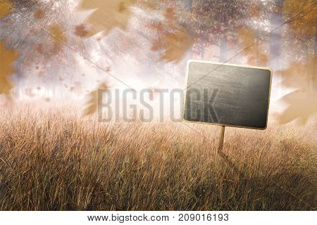 Chalkboard In The Middle Of Grass