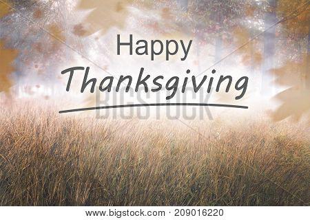 Happy Thanksgiving Concept