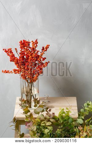 Ilex red. Dried branch in glass jug on wooden table and gray background