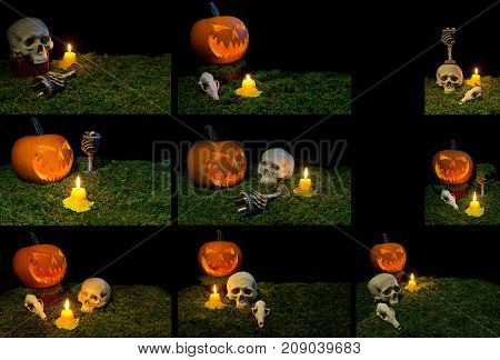Halloween Pumpkin, Human Skull, Animal Skull, Goblet And Candles Glowing In The Dark On A Forest Mos