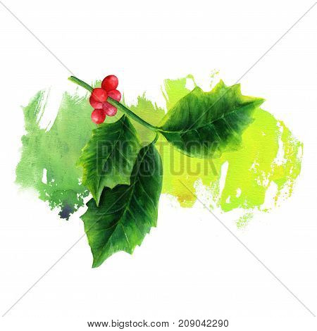 A watercolor drawing of a Christmas holly on a vibrant brush stroke, a design element for a festive greeting card or invitation