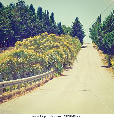 Stright Asphalt Road between Hills Covered with Bushes in Sicily Instagram Effect