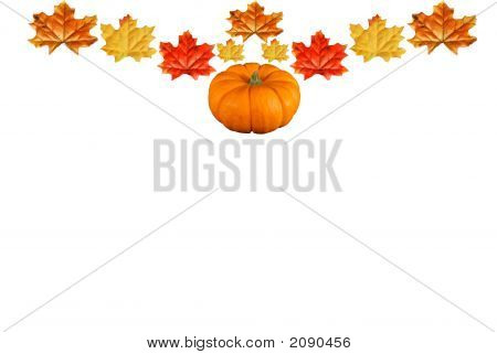 Pumpkin Leave Border