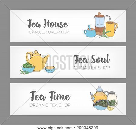 Bundle of colorful horizontal banners with hand drawn french press, cups, mugs, teapot and different types of organic tea on white background. Vector illustration for shop or teahouse advertisement