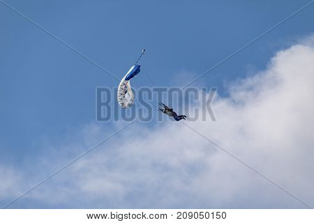 Parachutist fly to the sky. Skydivers in the sky