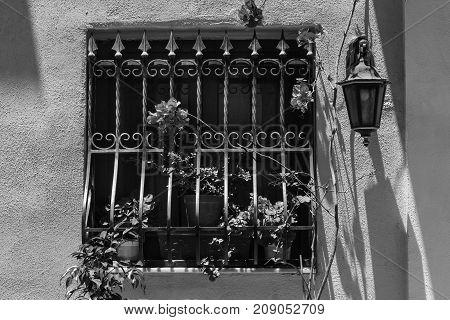 Window decorated with fresh flowers with ornamental metal lattice on Malta. Black and white picture