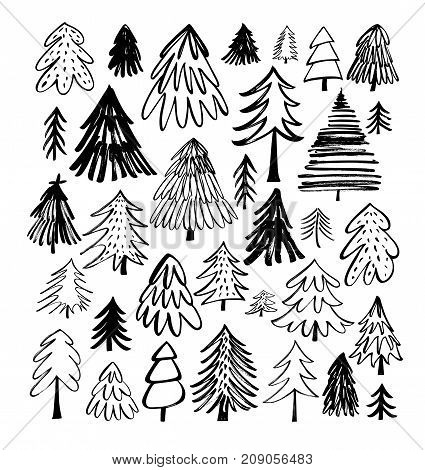 Set of fir-trees. Christmas trees elements. Holiday decoration. Ink illustration. Modern brush calligraphy. Isolated on white background.