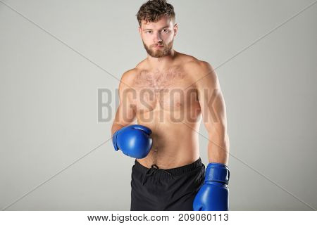 Male boxer on light background
