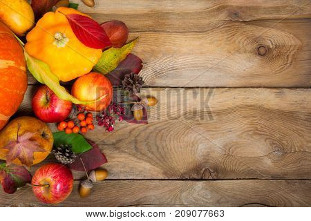 Thanksgiving Background With Yellow Squash, Apples, Rowan And Acorns, Copy Space.