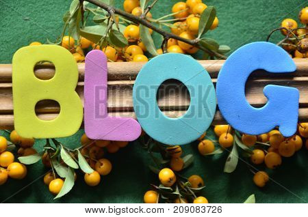 the word blog on a  abstract  colorful background