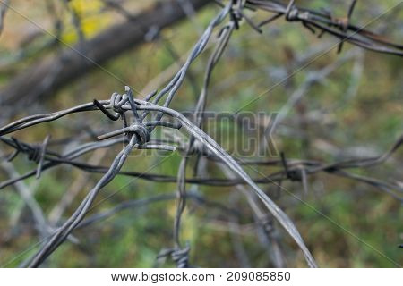 Old weathered rusty barbwire on the battlefield