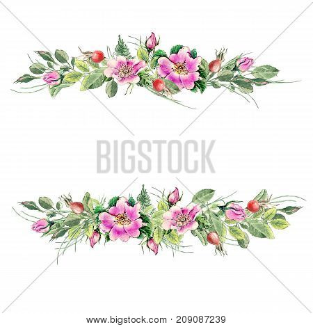 Banner With Flowering Pink Roses Names: Dog Rose, Rosa Canina, Japanese Rose, Rosa Rugosa, Sweet Bri