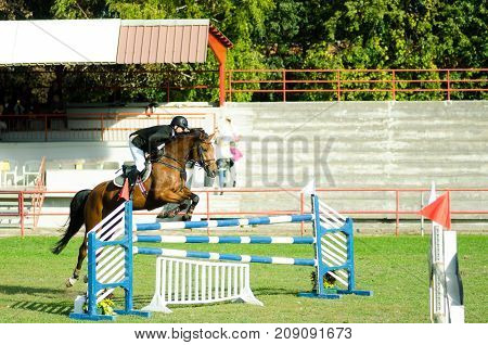 Еquestrian sport. Young man jockey ride beautiful brown horse and jump over the crotch in equestrian sport