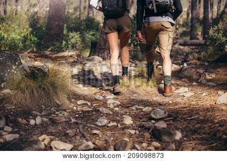Rear view of man and woman hikers trekking a rocky path in forest. Hiker couple exploring nature walking through the woods.