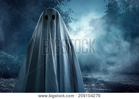 Mysterious ghost on the forest at night