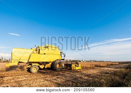 Harvesting Of Soybean Field With Combine Harvester.