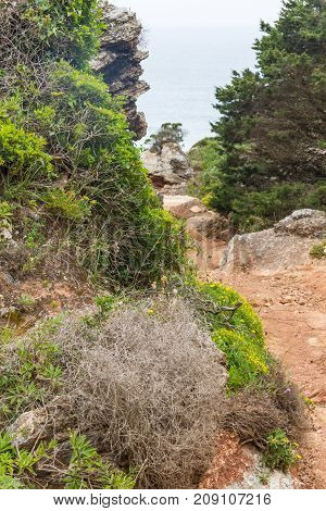 Trail To The Beach In Cabo De Sao Vicente