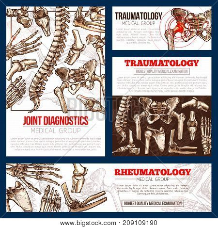 Traumatology and rheumatology medicine banner template set. Bone and joint diagnostics medical center poster with x-ray of human skeleton, hand, leg, knee, hip, spine, elbow, shoulder sketch brochure